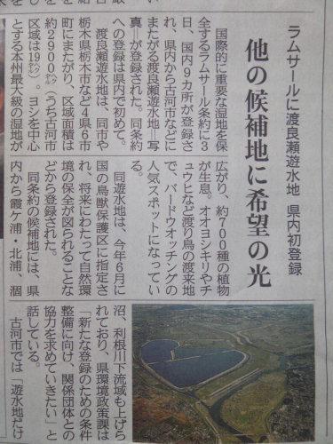 120704渡良瀬遊水地ラムサール条約.JPG