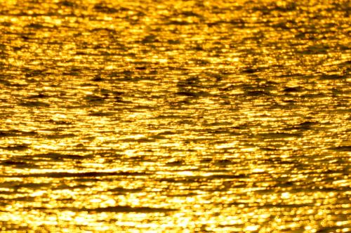 黄金2.jpg