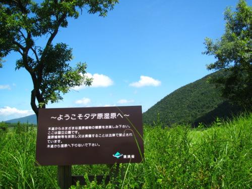 タデ原湿原.JPG