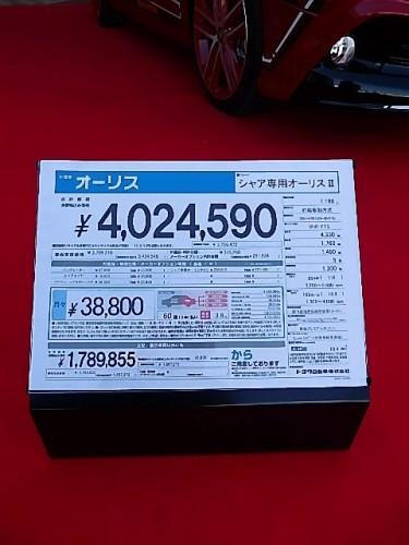 PA180989.JPG