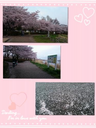 2017-04-29_16.23.59.jpg