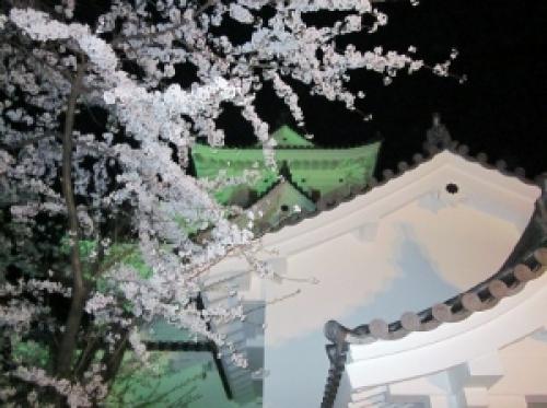 4写真 大垣城4 (300x224).jpg