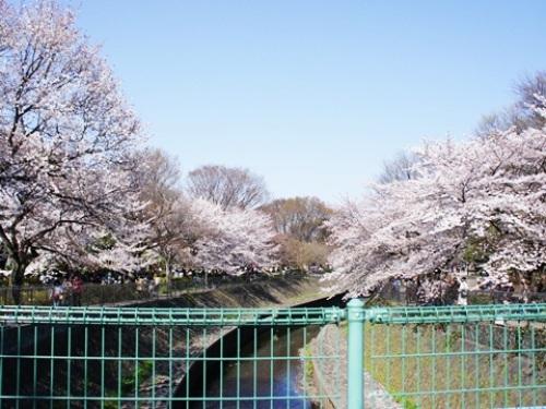 yomotsuku20120408-24.JPG