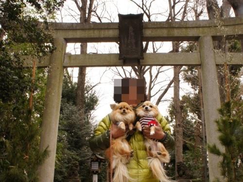 yomotsuku20140105-1.JPG