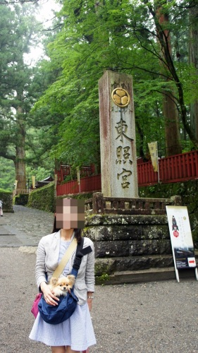 yomotsuku20150703-2.JPG