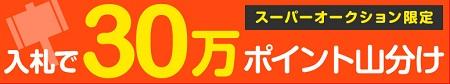 30万山分けオークションyamayake.jpg