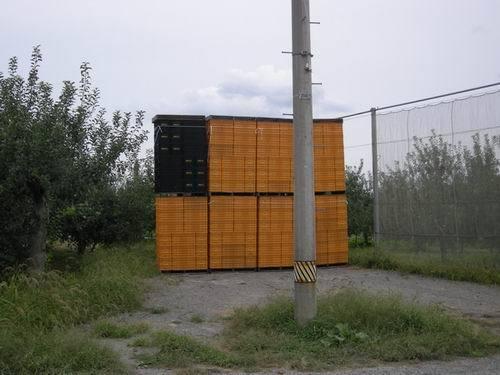 DSCN2584.jpg