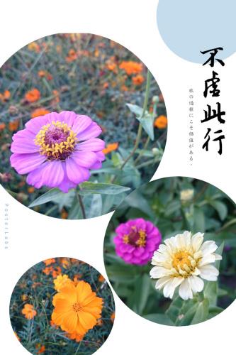 HBGC_20141020223503.jpg