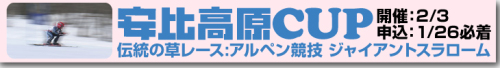 appi_cup_banner.jpg