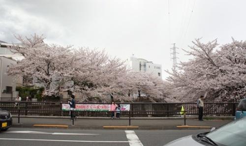 2014-0411-04.jpg