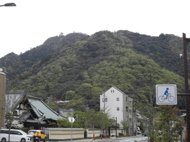 園 岐阜 リス 金華山山頂にある岐阜城のリス村の料金と開村時間