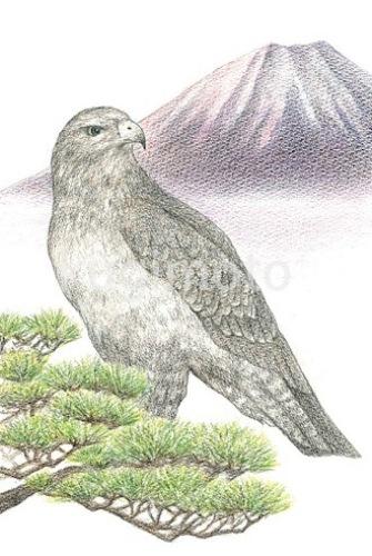 fujitaka_1.jpg