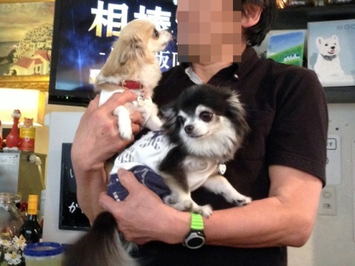 yomotsuku20140429-2.JPG