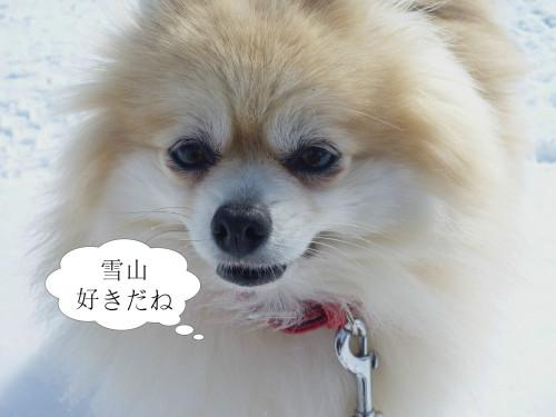 すき11.jpg