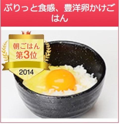 朝食付きフェス2014-3.jpg