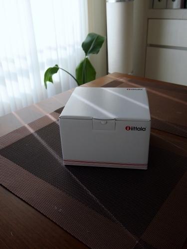 P2080938 (375x500).jpg