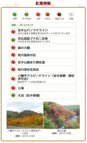 1013hati_kouyou.jpg