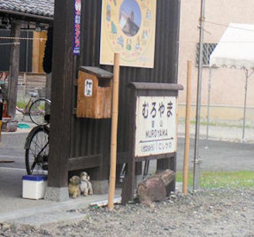 八王子7室山3.JPG