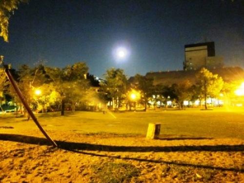 1写真 大垣公園.JPG