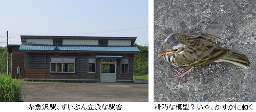 2013.07.07-2.JPG