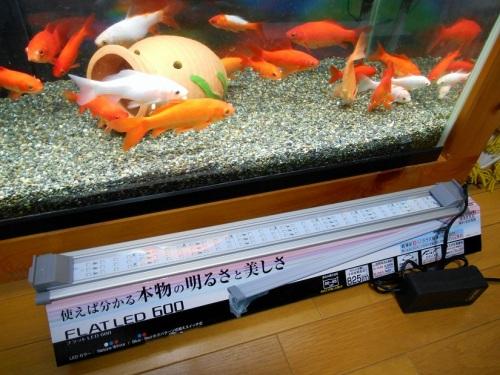 観賞魚用LEDライト