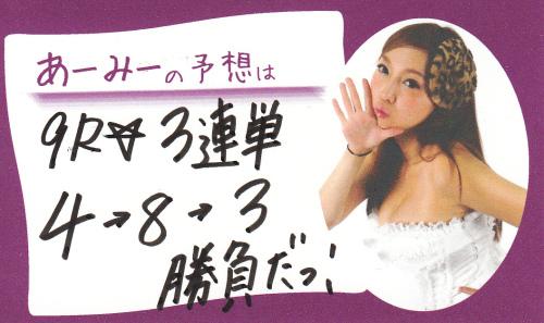 楠賞予想メモ_20121123.jpg
