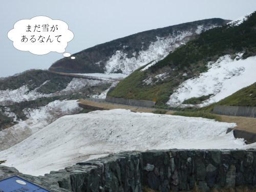 雪がある.jpg