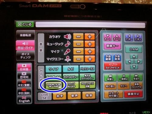 CIMG9500 p.jpg