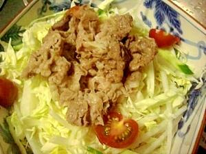しゃぶサラダ素麺