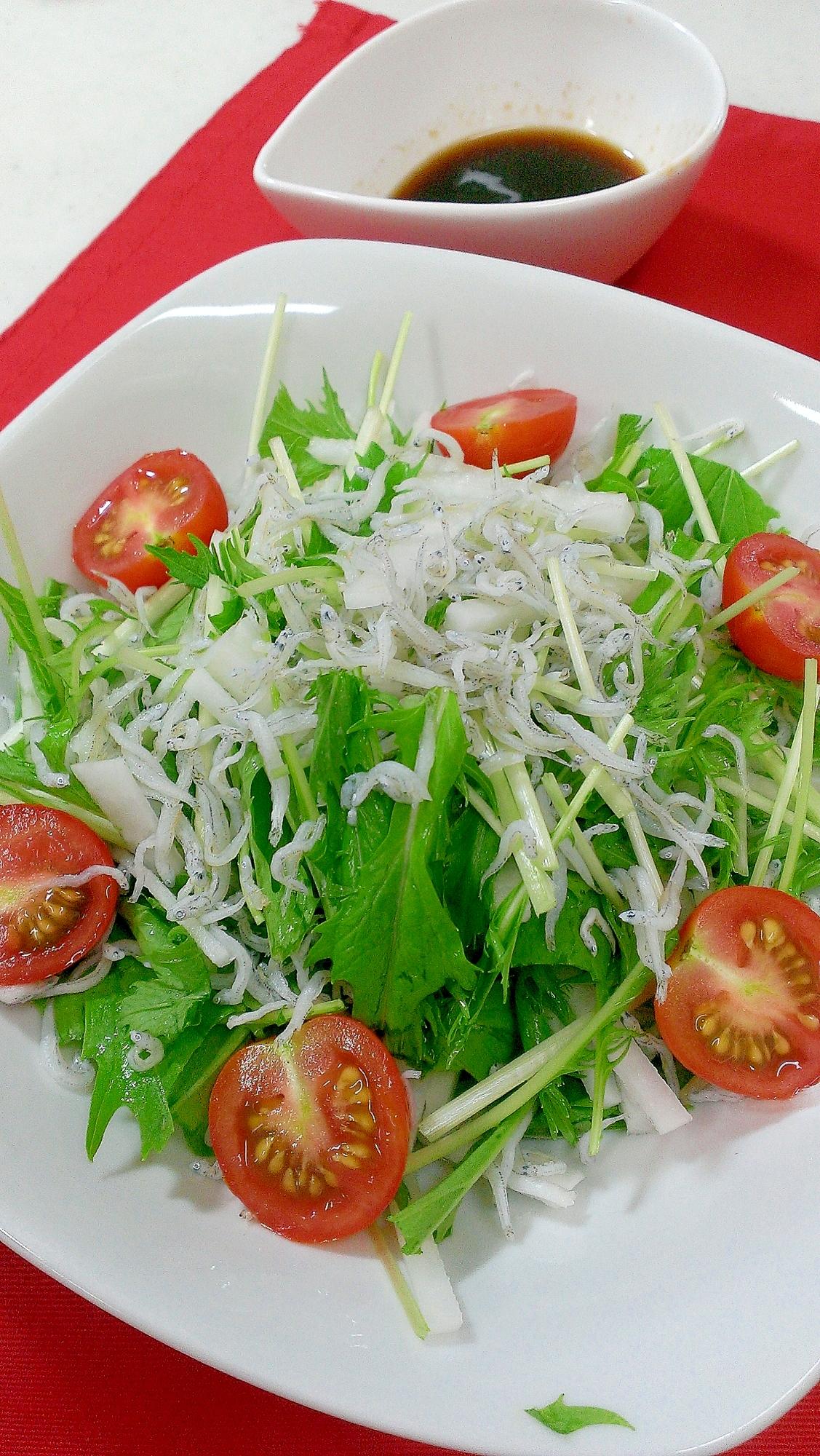 簡単!水菜と大根のしらすサラダ♪