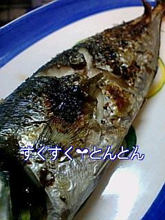 魚のクレイジーソルト焼き