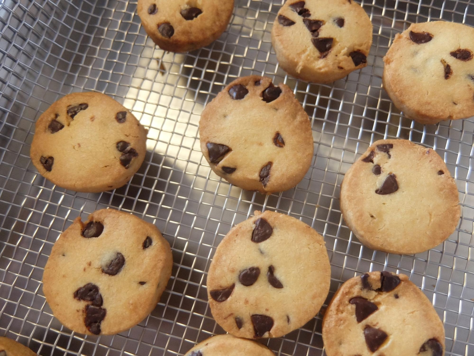 網の上にチョコチップクッキーがたくさんのっている