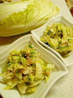 白菜のツナマヨサラダ