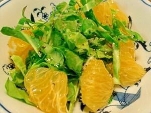 春キャベツと八朔のシンプルサラダ