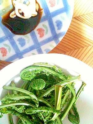 山菜こごみ+マヨしょうゆで春の味♪