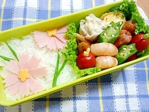 簡単キャラ弁☆コスモスのお弁当♪