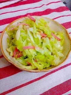 【簡単!シンプル!】キャベツのさっぱりサラダ
