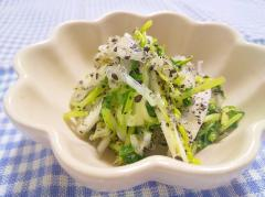 胡麻感たっぷり♡白菜と豆苗の胡麻和え