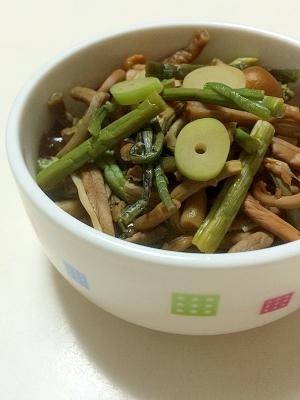 山菜 ミックス