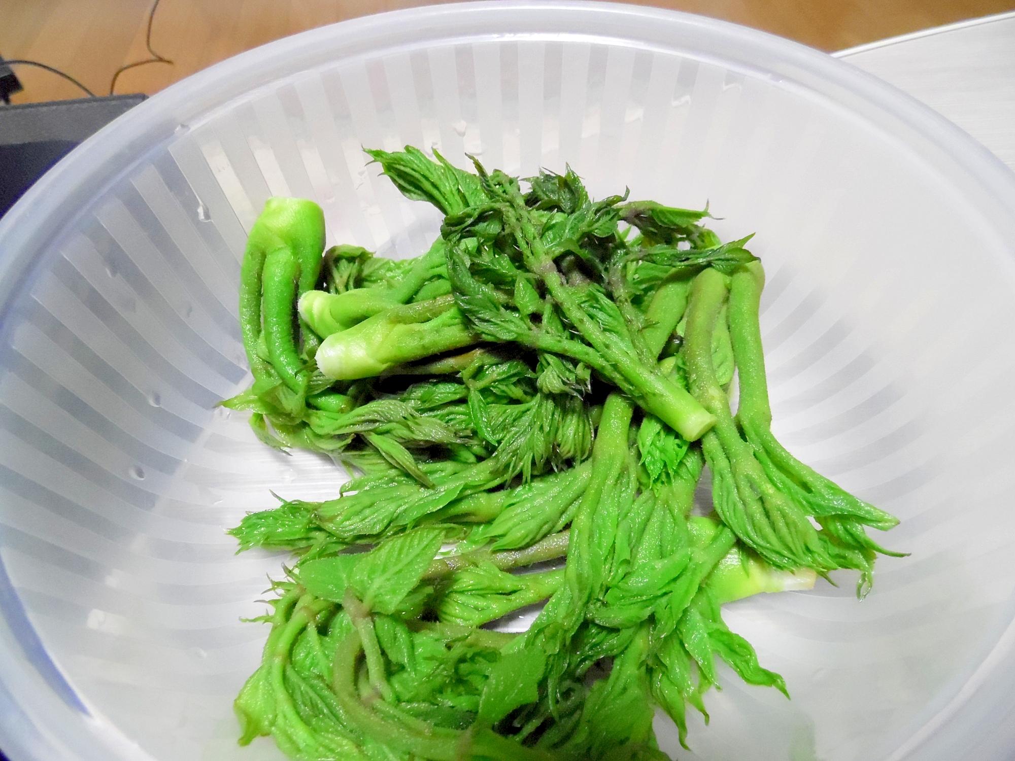 たらの芽の副菜