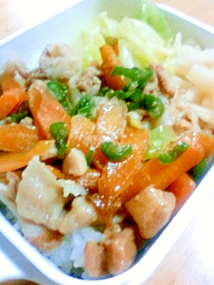 スチーマーで、簡単!野菜たっぷり、豚丼