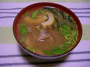 タケノコと舞茸のおみそ汁
