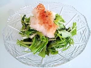 わかめと水菜の和風サラダ