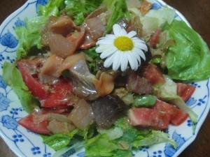 居酒屋に良くある刺身サラダ