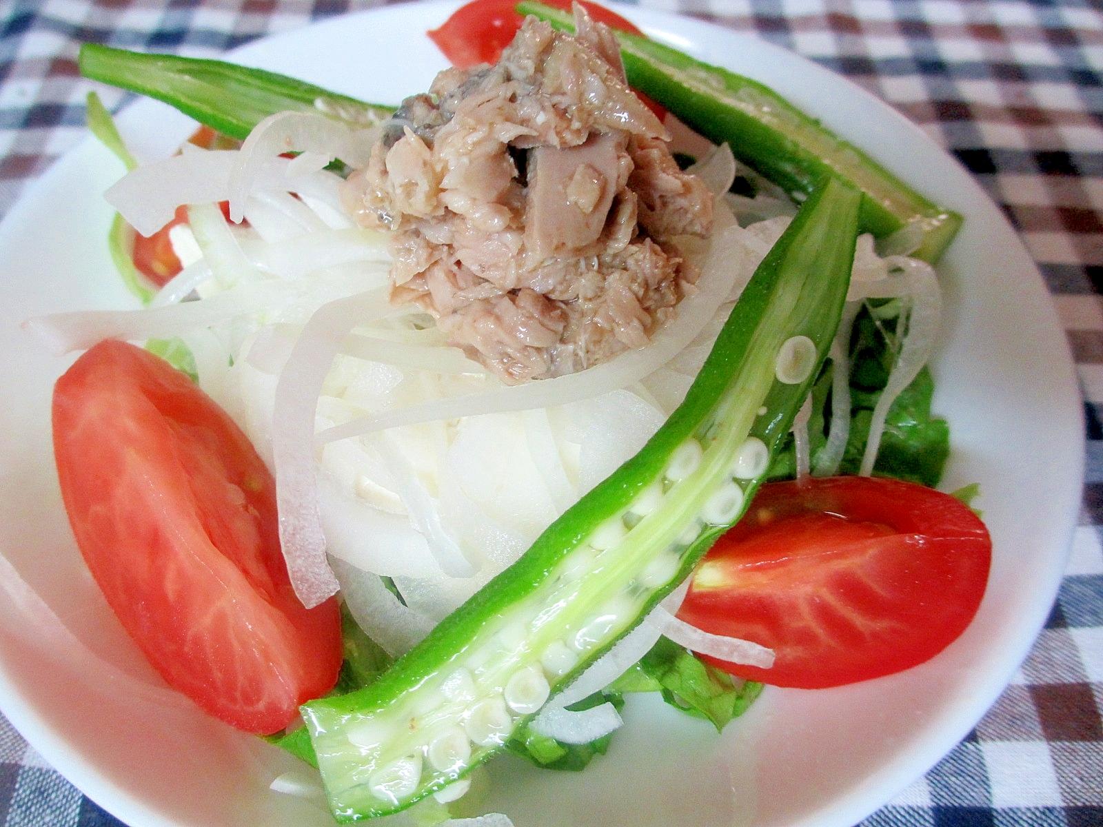 ツナと豆腐とオニオンスライスサラダ