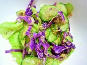 胡瓜とツナのサラダ