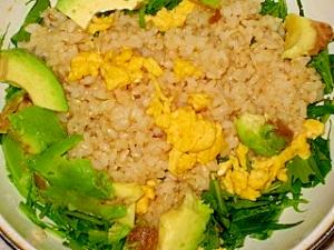 アボカド&水菜のヘルシーライスサラダ
