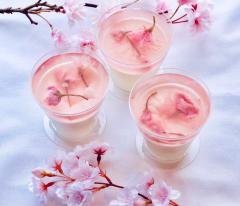 桜のゼリーとパンナコッタ