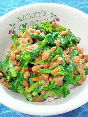 納豆の食べ方-菜の花♪