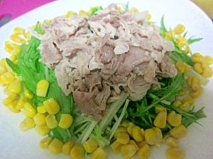 夏バテ対策!豚肉のサラダ